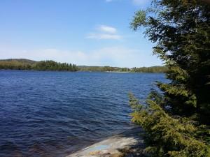 Nature Walk 6 Elliot Lake